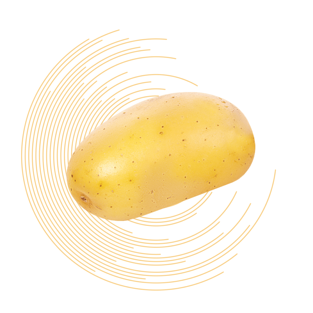 Calibratrice per patate